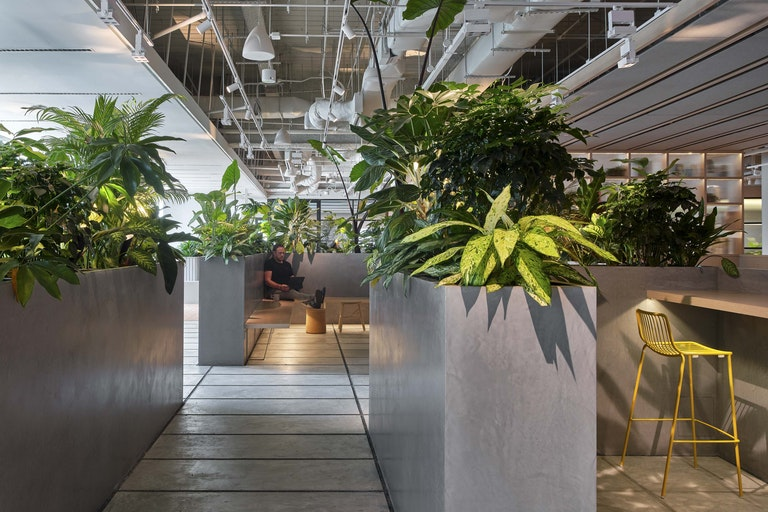 Workplace community – Integrated stair, theater seating, cafe and connective 'jungle' garden areas offer a wide variety of environments for this connected workplace community designed to meet WELL, LEED, and RESET standards – Zendesk Singapore.